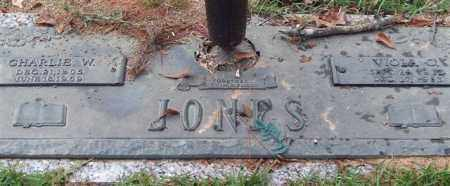 JONES, CHARLIE W. - Saline County, Arkansas | CHARLIE W. JONES - Arkansas Gravestone Photos
