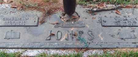 JONES, VIOLA O. - Saline County, Arkansas | VIOLA O. JONES - Arkansas Gravestone Photos