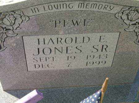 JONES, SR., HAROLD E. - Saline County, Arkansas | HAROLD E. JONES, SR. - Arkansas Gravestone Photos