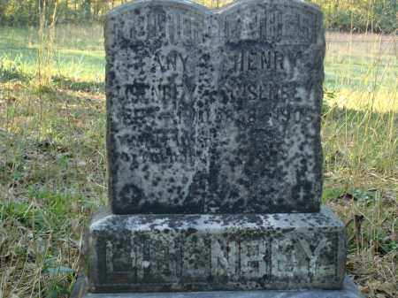 LISENBY, HENRY - Saline County, Arkansas | HENRY LISENBY - Arkansas Gravestone Photos