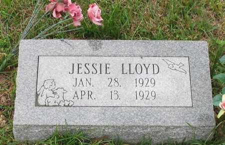 LLOYD, JESSIE - Saline County, Arkansas | JESSIE LLOYD - Arkansas Gravestone Photos