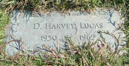 LUCAS, D. HARVEY - Saline County, Arkansas | D. HARVEY LUCAS - Arkansas Gravestone Photos