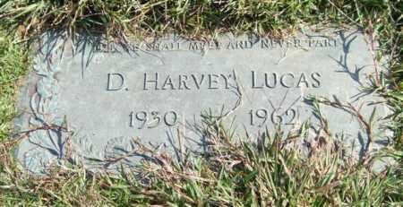 LUCAS, D. HARVEY - Saline County, Arkansas | D. HARVEY LUCAS - Arkansas Gravestone Photos