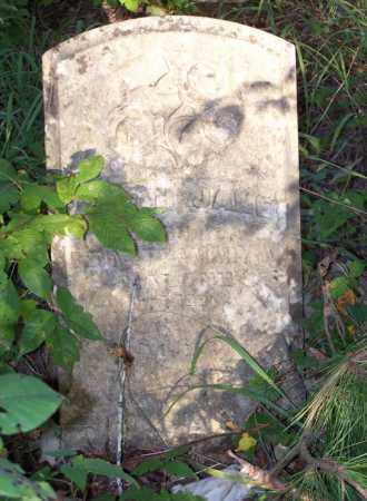 MALONE, SARAH JANE - Saline County, Arkansas | SARAH JANE MALONE - Arkansas Gravestone Photos