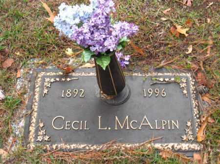 MONEY MCALPIN, LENA CECIL - Saline County, Arkansas | LENA CECIL MONEY MCALPIN - Arkansas Gravestone Photos