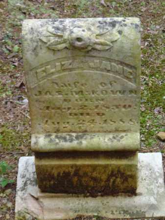 MCKEOWN, ELIZA JANE - Saline County, Arkansas   ELIZA JANE MCKEOWN - Arkansas Gravestone Photos