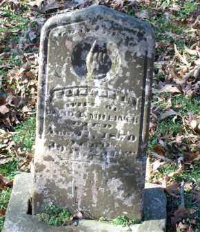 MILLINER, ELIZABETH - Saline County, Arkansas | ELIZABETH MILLINER - Arkansas Gravestone Photos