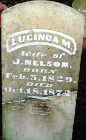 NELSON, LUCINDA M - Saline County, Arkansas | LUCINDA M NELSON - Arkansas Gravestone Photos