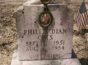 OTTS, PHILLIS DIAN - Saline County, Arkansas | PHILLIS DIAN OTTS - Arkansas Gravestone Photos