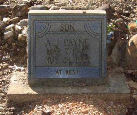 PAYNE, A. J. - Saline County, Arkansas | A. J. PAYNE - Arkansas Gravestone Photos