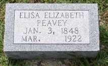 PEAVEY, ELISA ELIZABETH - Saline County, Arkansas | ELISA ELIZABETH PEAVEY - Arkansas Gravestone Photos