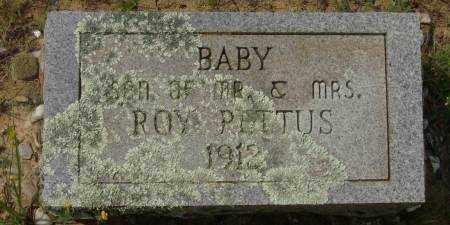 PETTUS, BABY - Saline County, Arkansas | BABY PETTUS - Arkansas Gravestone Photos