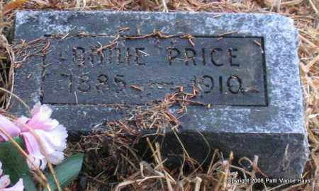 PRICE, ANNIE - Saline County, Arkansas | ANNIE PRICE - Arkansas Gravestone Photos