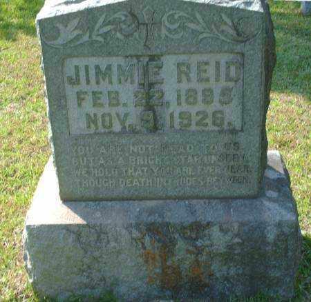 REID, JIMMIE - Saline County, Arkansas | JIMMIE REID - Arkansas Gravestone Photos
