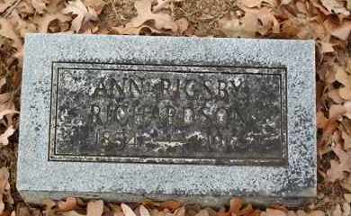 RICHARDSON, ANN - Saline County, Arkansas | ANN RICHARDSON - Arkansas Gravestone Photos