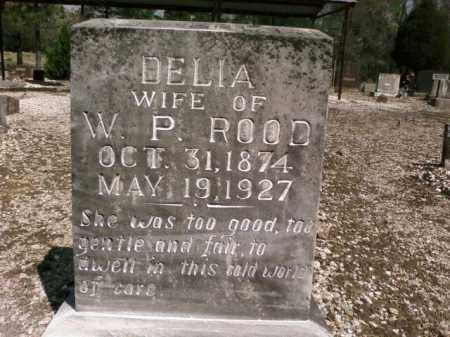 ROOD, DELIA - Saline County, Arkansas | DELIA ROOD - Arkansas Gravestone Photos