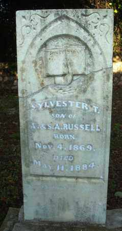RUSSELL, SYLVESTER T - Saline County, Arkansas | SYLVESTER T RUSSELL - Arkansas Gravestone Photos