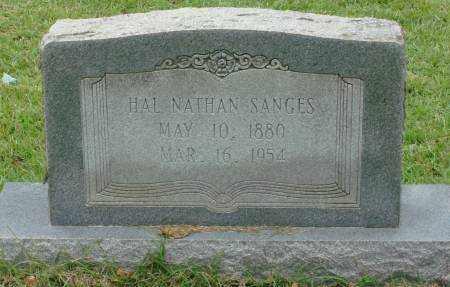 SANGES, HAL NATHAN - Saline County, Arkansas | HAL NATHAN SANGES - Arkansas Gravestone Photos