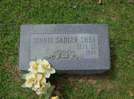SHEA, JENNIE - Saline County, Arkansas | JENNIE SHEA - Arkansas Gravestone Photos