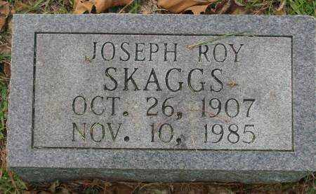 SKAGGS, JOSEPH ROY - Saline County, Arkansas | JOSEPH ROY SKAGGS - Arkansas Gravestone Photos