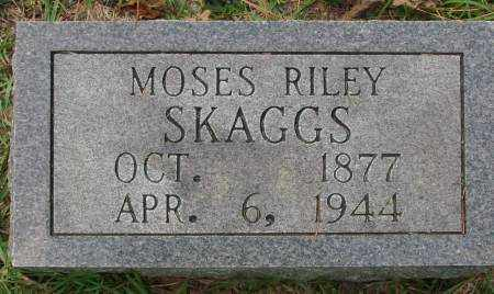 SKAGGS, MOSES RILEY - Saline County, Arkansas | MOSES RILEY SKAGGS - Arkansas Gravestone Photos