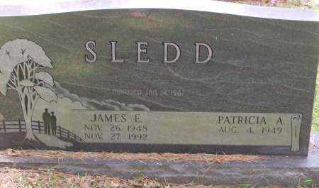 SLEDD, JAMES E. - Saline County, Arkansas | JAMES E. SLEDD - Arkansas Gravestone Photos
