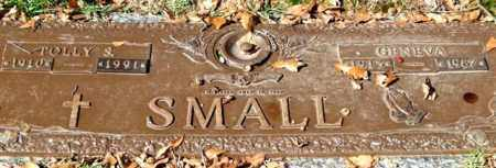 SMALL, TOLLY S. - Saline County, Arkansas | TOLLY S. SMALL - Arkansas Gravestone Photos