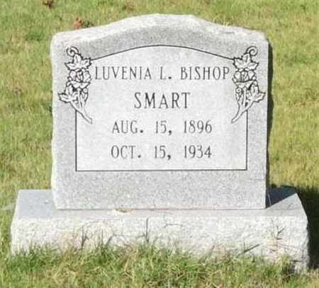 SMART, LUVENIA L. - Saline County, Arkansas | LUVENIA L. SMART - Arkansas Gravestone Photos