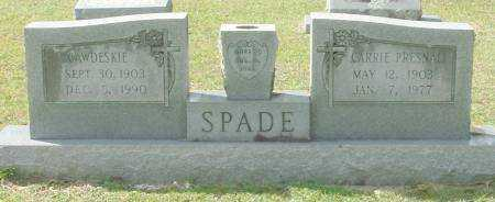 SPADE, CAWDESKIE - Saline County, Arkansas | CAWDESKIE SPADE - Arkansas Gravestone Photos