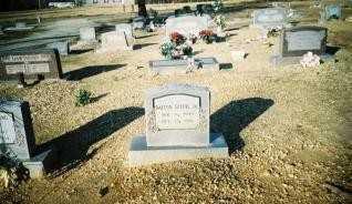 SPEER, JR, DALTON - Saline County, Arkansas | DALTON SPEER, JR - Arkansas Gravestone Photos