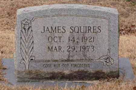 SQUIRES, JAMES - Saline County, Arkansas | JAMES SQUIRES - Arkansas Gravestone Photos