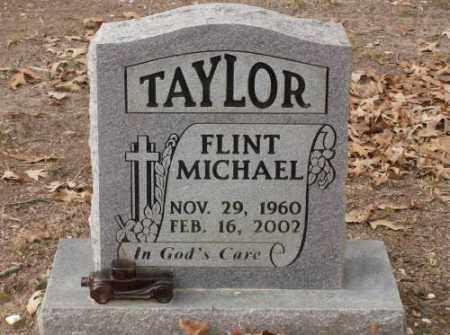 TAYLOR, FLINT MICHAEL - Saline County, Arkansas | FLINT MICHAEL TAYLOR - Arkansas Gravestone Photos
