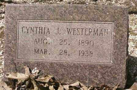 WESTERMAN, CYNTHIA J. - Saline County, Arkansas | CYNTHIA J. WESTERMAN - Arkansas Gravestone Photos