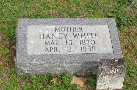 CLEMONS WHITE, LOU HANEY - Saline County, Arkansas | LOU HANEY CLEMONS WHITE - Arkansas Gravestone Photos