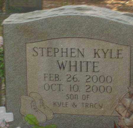 WHITE, STEPHEN KYLE - Saline County, Arkansas | STEPHEN KYLE WHITE - Arkansas Gravestone Photos