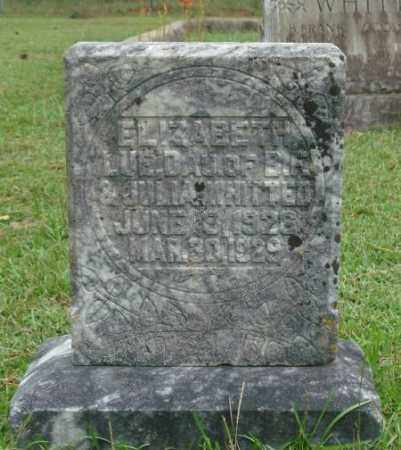 WHITTED, ELIZABETH LUE - Saline County, Arkansas | ELIZABETH LUE WHITTED - Arkansas Gravestone Photos