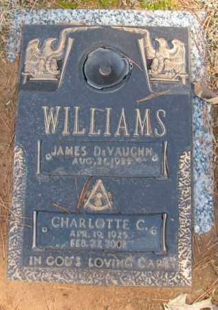 WILLIAMS, CHARLOTTE C. - Saline County, Arkansas | CHARLOTTE C. WILLIAMS - Arkansas Gravestone Photos