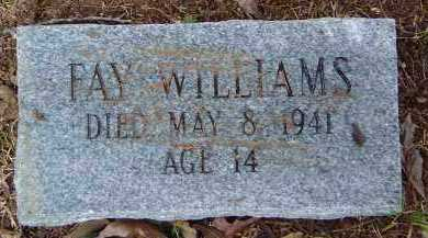 WILLIAMS, FAY - Saline County, Arkansas | FAY WILLIAMS - Arkansas Gravestone Photos