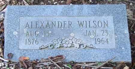 WILSON, ALEXANDER - Saline County, Arkansas | ALEXANDER WILSON - Arkansas Gravestone Photos