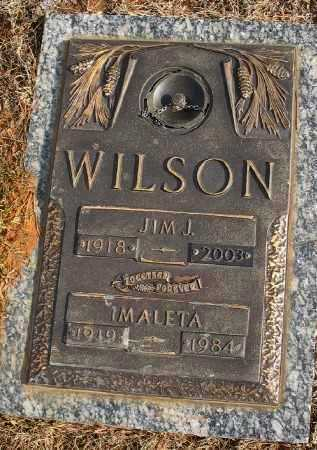 WILSON, JIM J. - Saline County, Arkansas | JIM J. WILSON - Arkansas Gravestone Photos