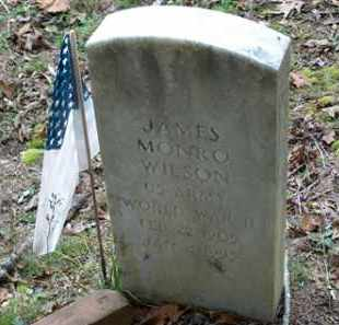 WILSON (VETERAN WWII), JAMES MONRO - Saline County, Arkansas | JAMES MONRO WILSON (VETERAN WWII) - Arkansas Gravestone Photos
