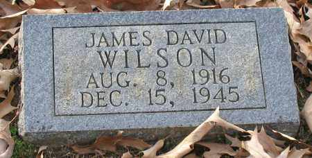 WILSON, JAMES DAVID - Saline County, Arkansas | JAMES DAVID WILSON - Arkansas Gravestone Photos