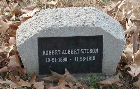 WILSON, ROBERT ALBERT - Saline County, Arkansas | ROBERT ALBERT WILSON - Arkansas Gravestone Photos