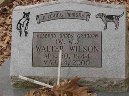 WILSON, WALTER - Saline County, Arkansas | WALTER WILSON - Arkansas Gravestone Photos