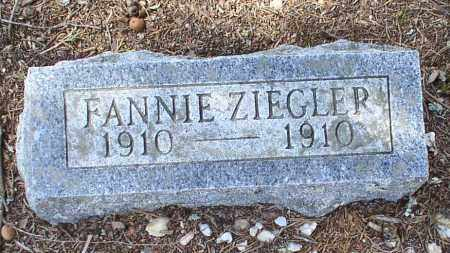 ZIEGLER, FANNIE - Saline County, Arkansas | FANNIE ZIEGLER - Arkansas Gravestone Photos