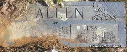 JOHNSON ALLEN, LENA M - Scott County, Arkansas | LENA M JOHNSON ALLEN - Arkansas Gravestone Photos