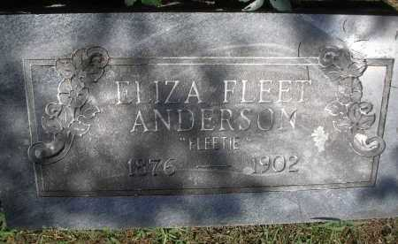 ANDERSON, ELIZA - Scott County, Arkansas | ELIZA ANDERSON - Arkansas Gravestone Photos