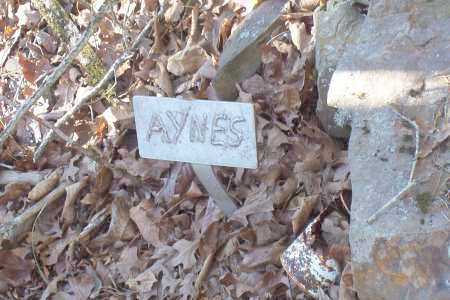 *AYNES SIGN,  - Scott County, Arkansas |  *AYNES SIGN - Arkansas Gravestone Photos