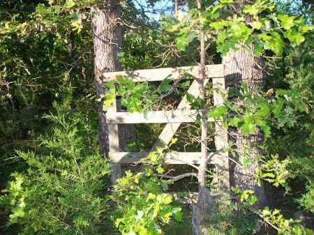 * BELL GATE,  - Scott County, Arkansas    * BELL GATE - Arkansas Gravestone Photos