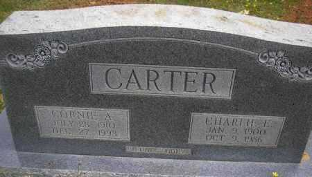 CARTER, CHARLIE E - Scott County, Arkansas | CHARLIE E CARTER - Arkansas Gravestone Photos